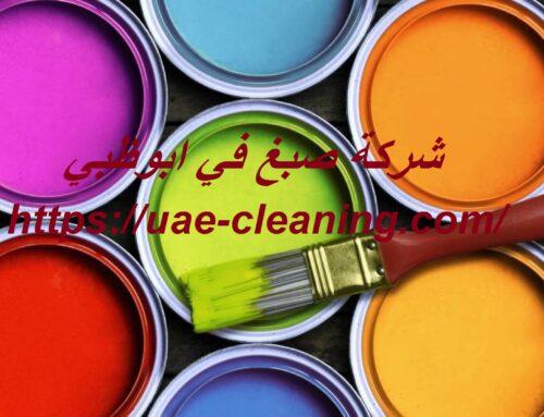 شركة صبغ في ابوظبي |0586583880|صباغ رخيص